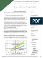 Cálculo e Selecção de Correias Transportadoras _ Ciência e Tecnologia da BorrachaCiência e Tecnologia da Borracha