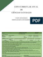CCNN PCA 4TO. EGB.docx