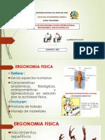 TIPOS DE ERGONOMIA SEGÚN INTERNATIONAL ERGONOMICS ASSOCIATION-IEA