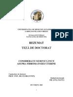 Rezumat-teza-de-doctorat (1).pdf