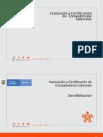 Sensibilizacion ECCL y Mercadeo en linea.
