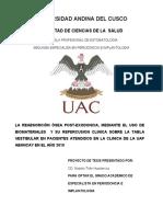 proyecto  ANDINA - 2019 (1).docx