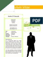 Andre 2011 (CV)