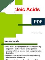 Nucleic Acids 1