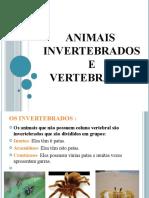 animais invertebrdos e vertebrados-.pptx