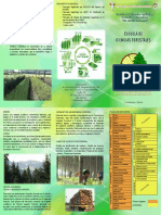 triptico-esfor-19.pdf