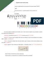 Organizări sonore tonale