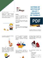 MEDIDAS DE PREVENCION triptico