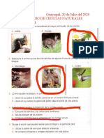 CUESTIONARIOS DEL PRIMER PARCIAL