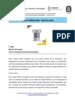 5 to ano_Psicologia_ Principales Corrientes Psicologicas