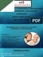 PRACTICA 3caracterisiticas de la adultez intermedia PDF
