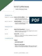 CV Exple.docx