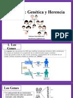 Genética y Herencia