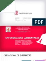 11va- Clase Enfermedades Ambientales PAT. GENERAL - 2020-1 - ICA (1).pdf