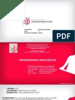 11va. CLASE PRACTICA - NEOPLASIAS MALIGNAS 2-PAT GENERAL - ICA.pdf
