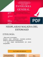 neoplasias final(2).pptx