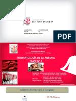 LOONA SATELLITE.pdf