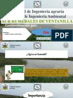 Rotafolio_ Zinc_Cabello.pptx