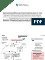 algoritmo-de-acceso-endo-intra-venoso-y-toma-de-sangre-en-pacientes-hospitalizados-con-covid-19