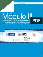 Módulo III Aprendizaje de la Lengua materna L1 Idioma garífuna, maya y xinca (2)