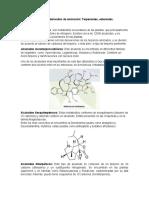 Alcaloides derivados de aminación terpenos, esteroides.docx