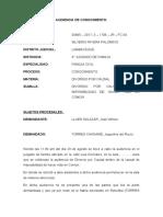 AUDIENCIA DE CONOCIMIENTO.docx