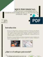 PPT PROYECTO - DMR v2
