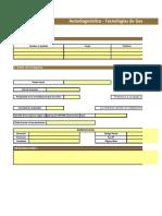 Autodiagnostico Empresarial  (7)