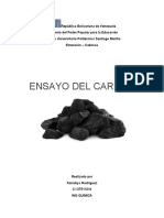 Ensayo del carbón.docx