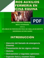 PRIMEROS AUXILIOS Y ENFERMERIA EN MEDICINA EQUINA 2