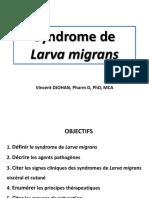 Syndrome de Larva migrans_Djohan
