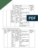 PROGRAMA 9 SECIONES.docx