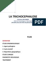 4. TRICHOCEPHALOSE L3