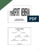 Transport Membran 2008