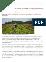 ¿Cuáles son los principales cambios en la entrega de tierras en usufructo con el nuevo Decreto-Ley_ _ Cubadebate