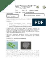 4126_biologia-grado-10