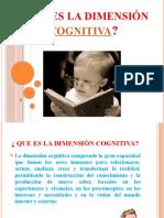 dimensincognitiva-130627031117-phpapp02