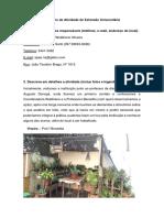 Relatório de Atividade de Extensão Universitária