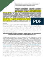 Teducciones de la info de DA.docx