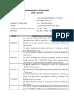 CRONOGRAMA DE ACTIVIDADES PACHACONAS
