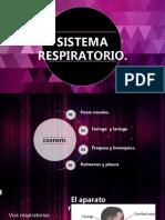 SISTEMA RESPIRA2