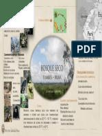 INFOGRAFÍA 2 - NIETO HUAMANCHUMO.pdf
