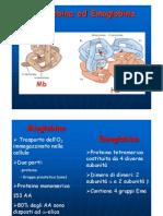 3 emoglobina mioglobina