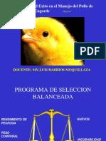 4. Las Claves del Exito Manejo Pollos-LB