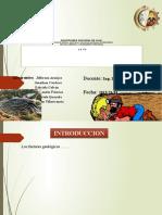Amenazas geologicas