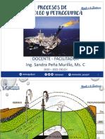 Cap 1 Petroleo.pdf
