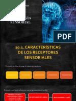 FISIOLOGÍA SENSORIAL diapos.pptx