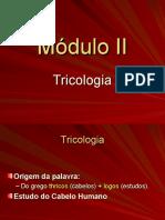 02 Módulo Tricologia dos fios