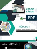 INTRODUCCIÓN DE LOS GIS.pdf