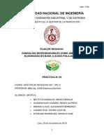 PLAN DE NEGOCIO (5)